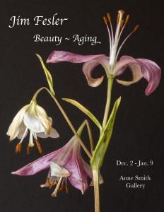 Fesler Beauty Aging