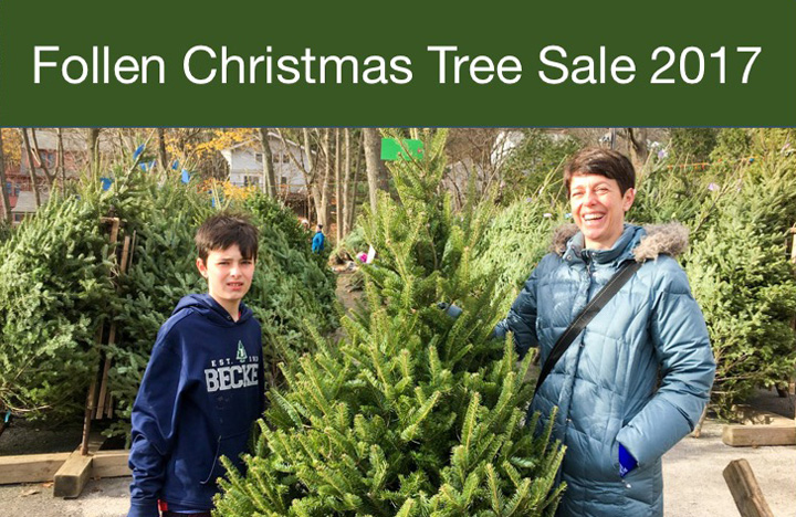 Need a Christmas Tree?